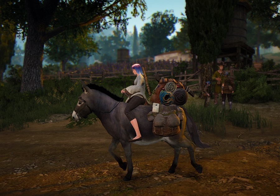 Bdo how to get a fast horse